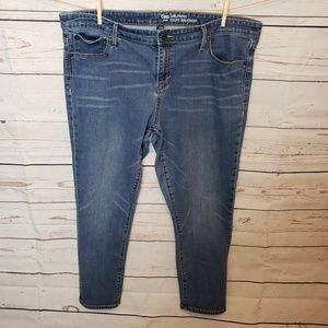 Gap Girlfriend Skinny Jean Plus Size Medium Wash